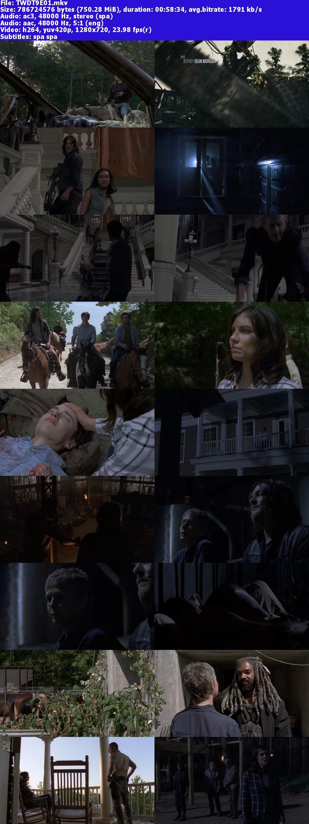 Walking Dead Temporad 9 [1-11] 720p Lat-Eng [GD-UB]