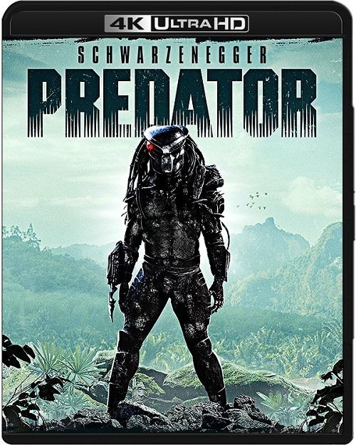 Predator (1987) MULTi.REMUX.2160p.UHD.Blu-ray.HDR.HEVC.DTS-HD.MA5.1-DENDA / LEKTOR i NAPISY PL