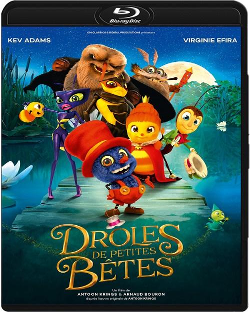 Co w trawie piszczy / Tall Tales from the Magical Garden of Antoon Krings / Drôles de petites betes (2017) PLDUB.720p.BluRay.x264.AC3-DENDA / DUBBING PL