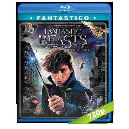 Animales Fantasticos Y Donde Encontrarlos 720p Lat-Cast-Ing 5.1 (2016)