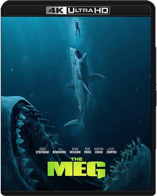 The Meg (2018) MULTi.REMUX.2160p.UHD.Blu-ray.HDR.HEVC.ATMOS7.1-DENDA / LEKTOR i NAPISY PL
