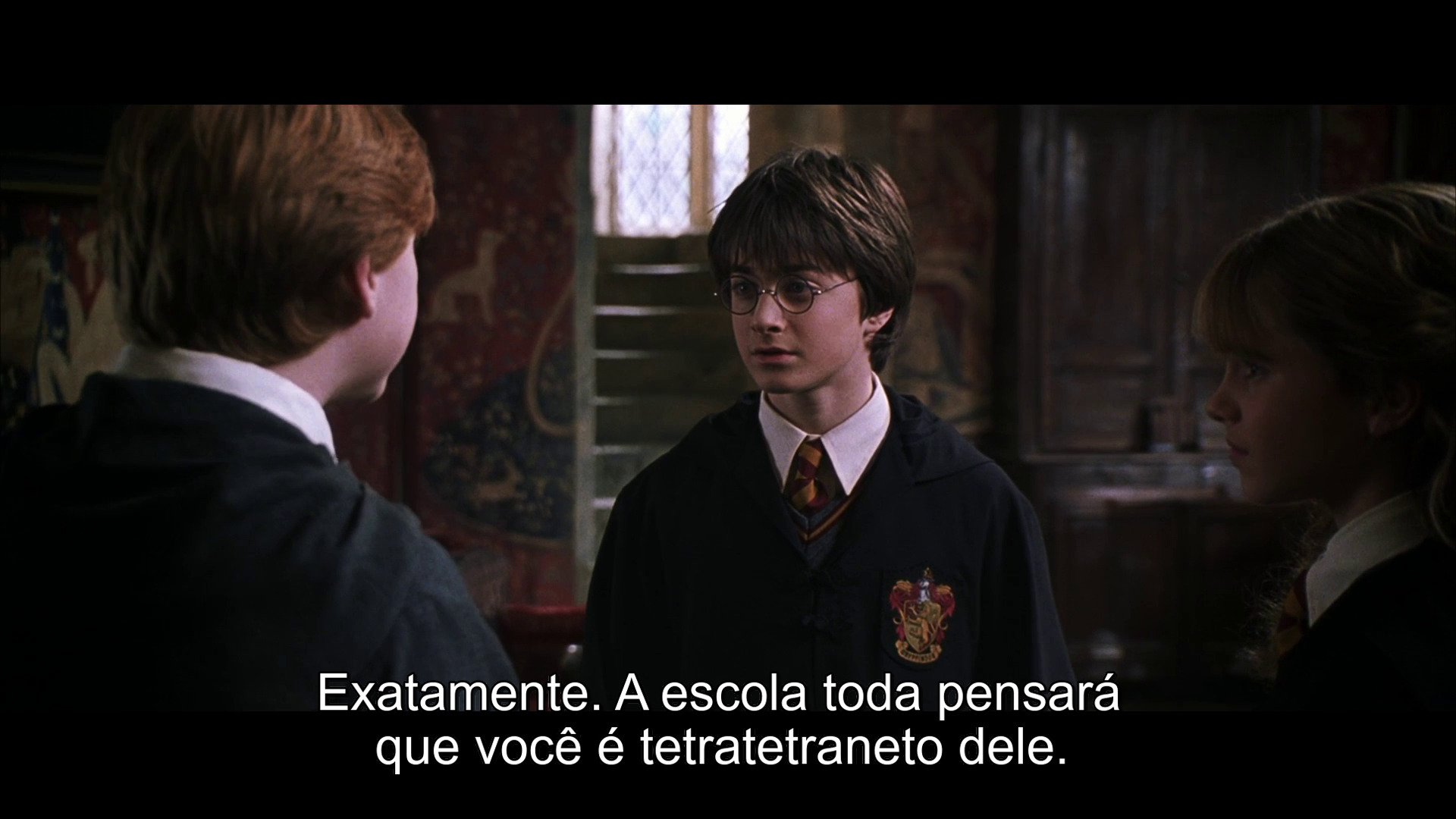 Harry Potter and the Chamber of Secrets 1080p NF WEB-DL Dual