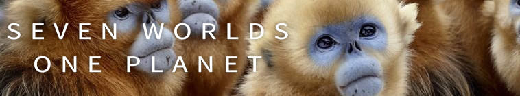 BBC  Seven Worlds, One Planet s01e02 720p MP4 + subs BigJ0554