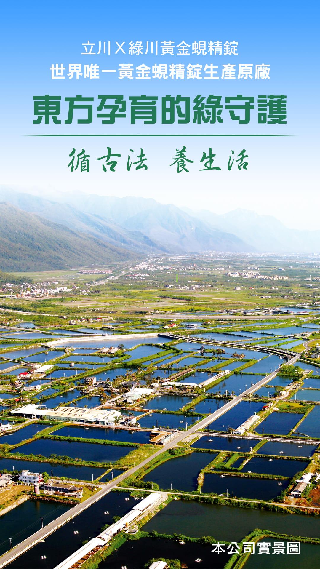 1.東方孕育的綠守護、循古法、養生活