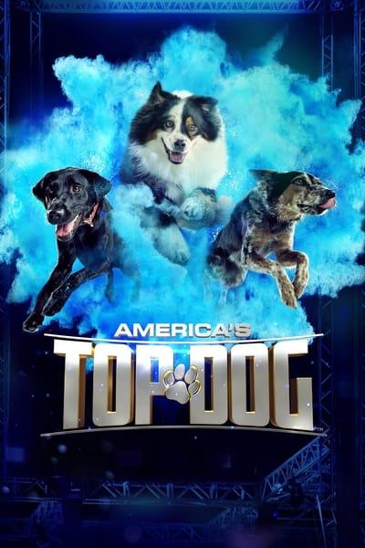 Americas Top Dog S02E06 720p HEVC x265-MeGusta