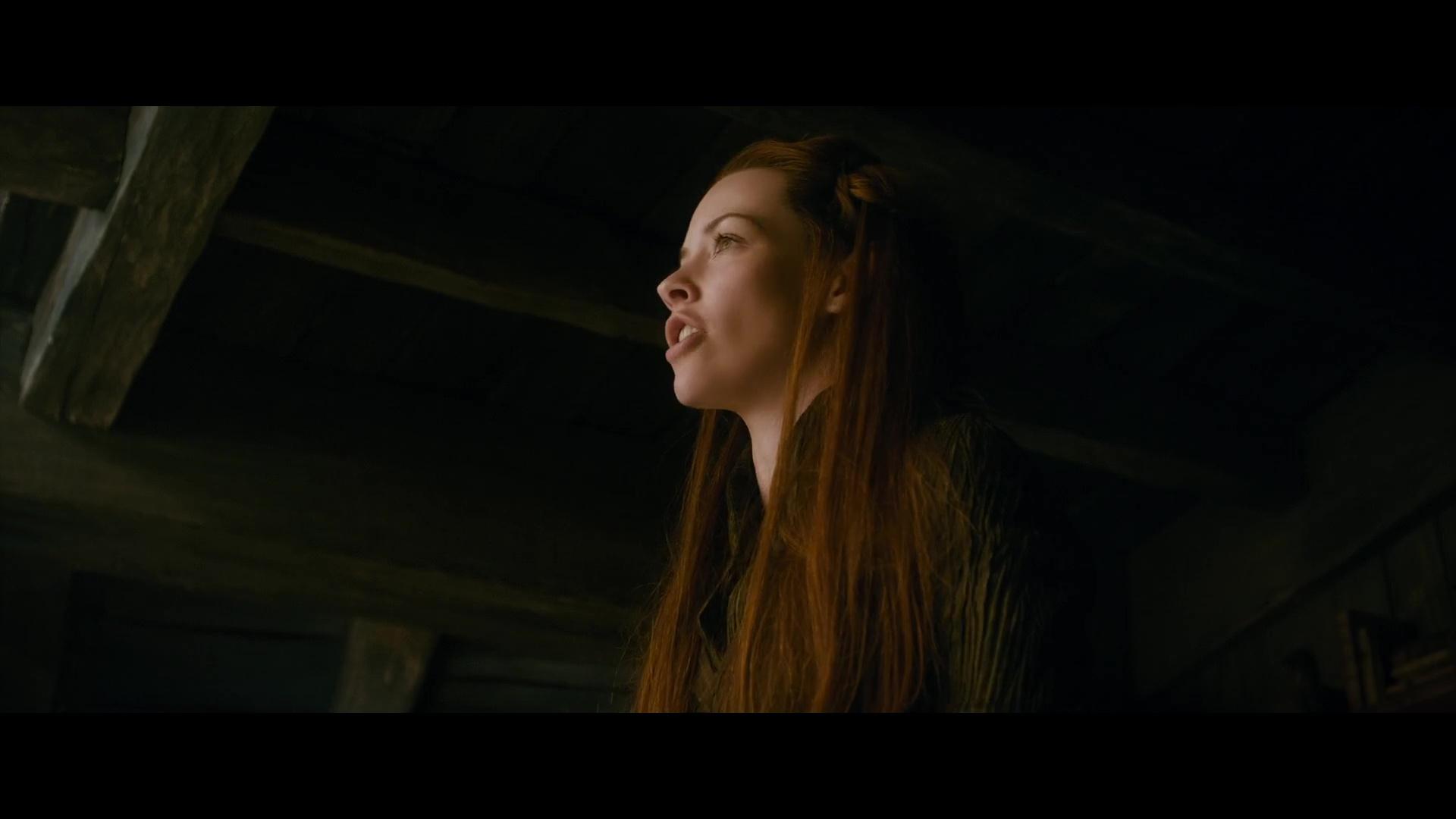 El Hobbit 2 1080p Lat-Cast-Ing[Fantasia](2013)
