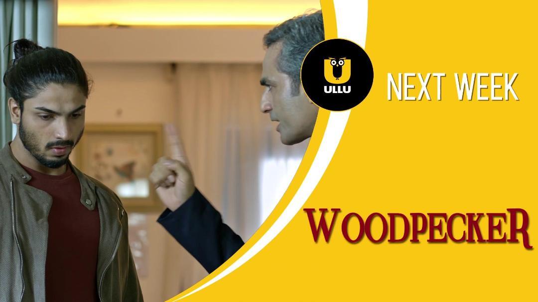 Woodpecker (2020) 1080p WEB-DL x264 AAC-Team IcTv Exclusive