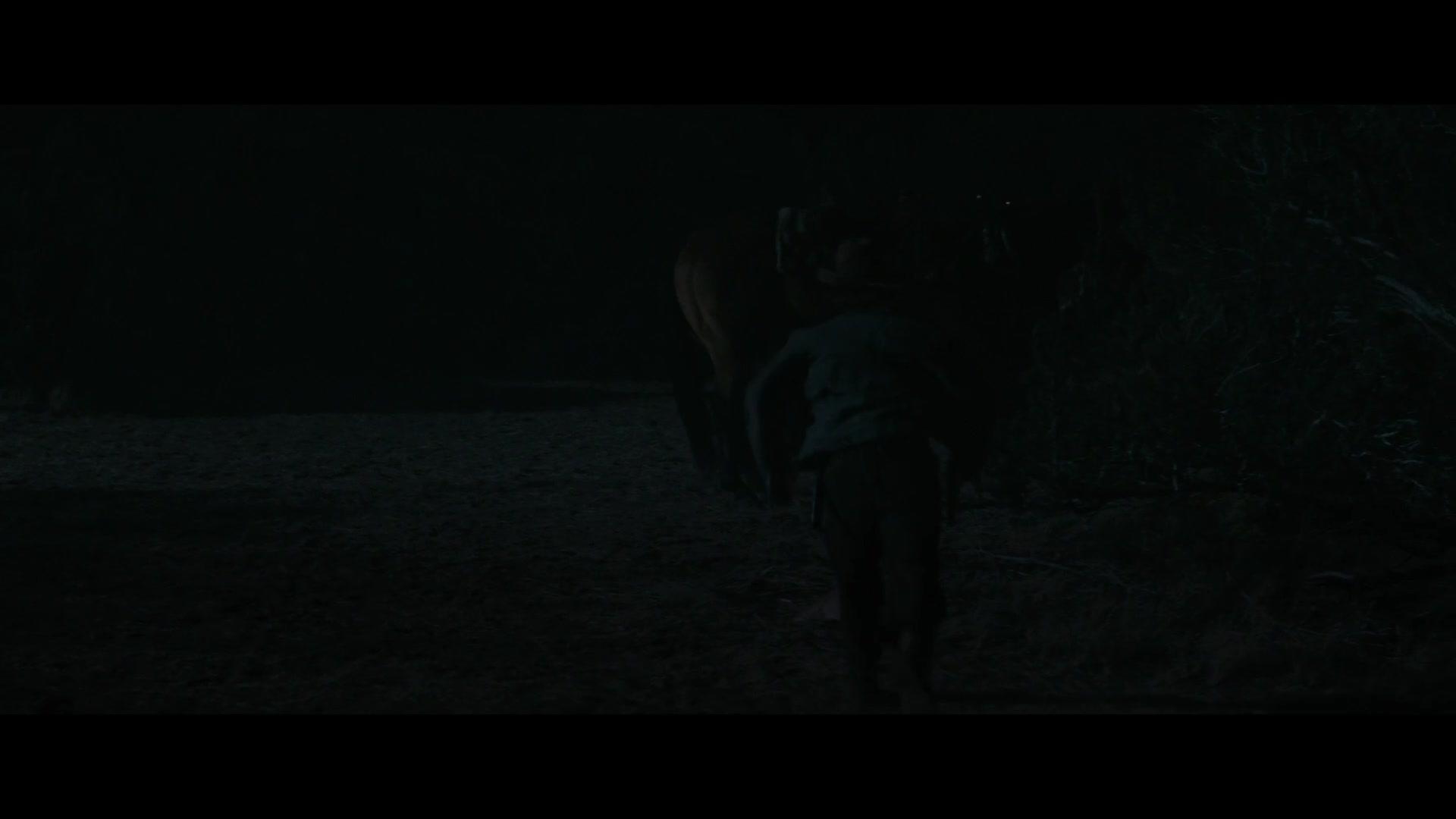 Noticias Del Gran Mundo [2020][BD-Rip][1080p][Lat-Cas-Ing][VS]