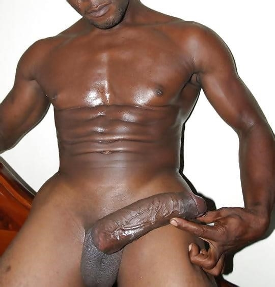 Gay black dick on tumblr-1969
