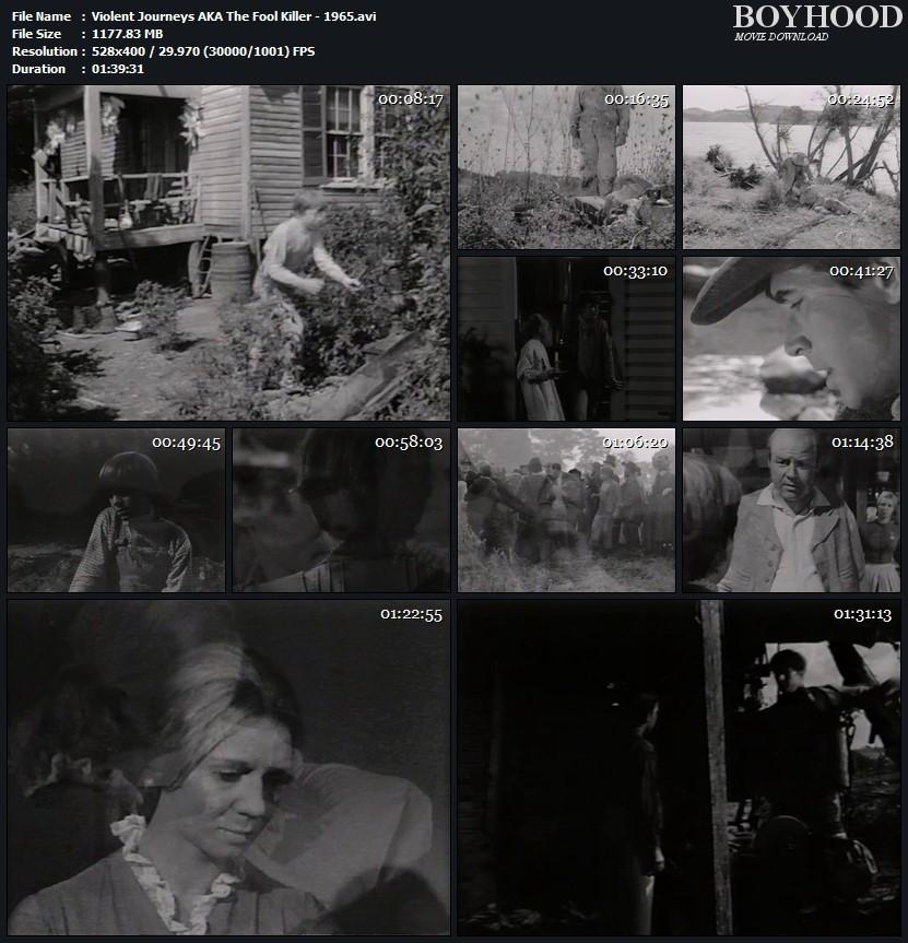 The Fool Killer 1965