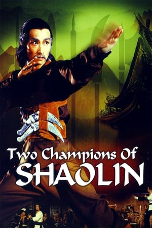 Two Champions Of Shaolin 1980 x264 720p Esub HD Dual Audio English Hindi GOPISAHI