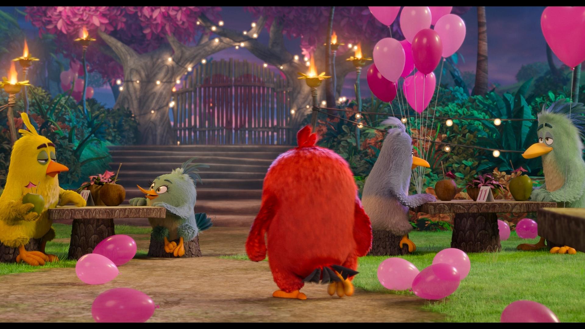 Angry Birds Duology 1080p BluRay REMUX AVC DTS HD MA 7.1 LameyHost ثنائية الطيور الغاضبة مدبلج للعربية تحميل تورنت 3 arabp2p.com