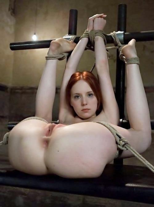 Amateur bondage anal-6856