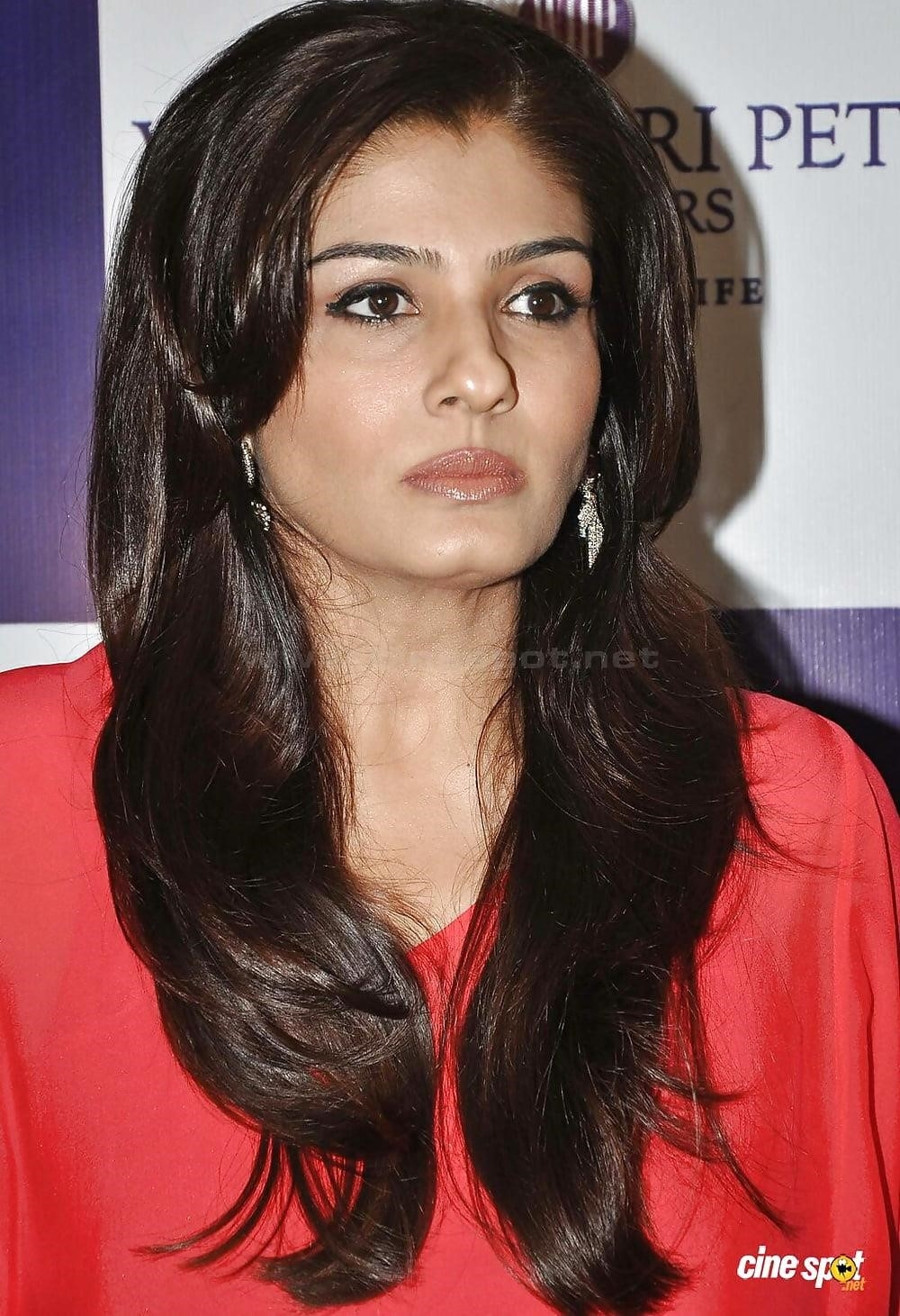 Raveena tandon hot sexy photo-6857