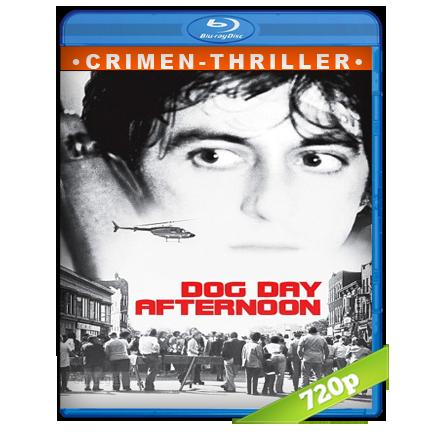 Tarde De Perros [1975][BD-Rip][720p][Trial Lat-Cas-Ing][Crimen]