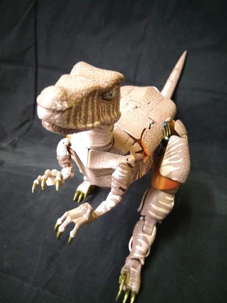 [Masterpiece] MP-41 Dinobot (Beast Wars) - Page 2 DPCJn1sP_o