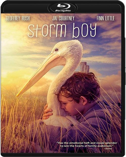 Chłopiec z burzy / Storm Boy (2019) MULTi.1080p.BluRay.x264.DTS.AC3-DENDA / DUBBING i NAPISY PL