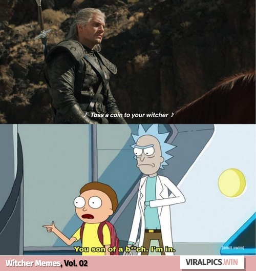 30+ The Witcher Netflix Funny Memes for True Fan of the Game & Show 13