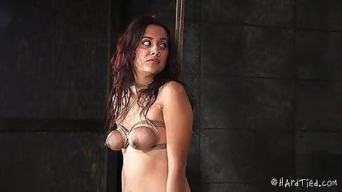 Porn bondage cartoon-6441