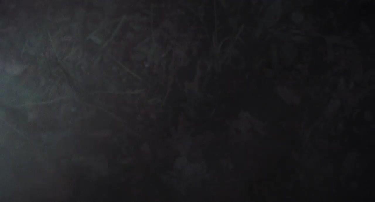 El Despertar Del Diablo [1981][BD-Rip][720p][Lat-Cas-Ing][VS]