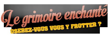 LE GRIMOIRE ENCHANTÉ AVeAklRS_o