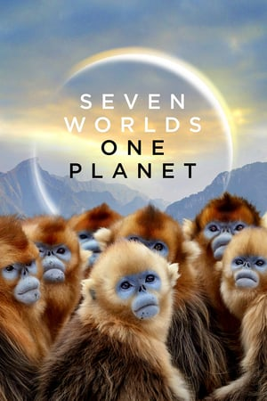 BBC  Seven Worlds, One Planet s01e03 720p MP4 + subs BigJ0554