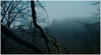 В ловушке / Hunted (2020/BDRip/HDRip)