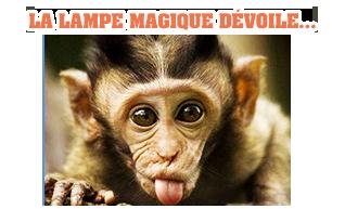 LA LAMPE MAGIQUE - Page 27 BSjYlOCc_o