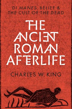The Ancient Roman Afterlife Di Manes, Belief, and the Cult of the Dead