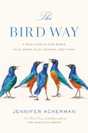 A New Look at How Birds Talk, Work, Play, Parent, and Think