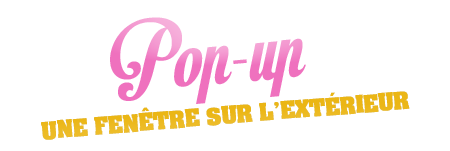 POP UP - le formulaire A9zGTtKC_o