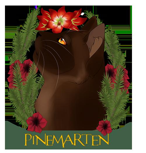 Bekijkt profiel - Pinemarten 4sY3Ju9F_o