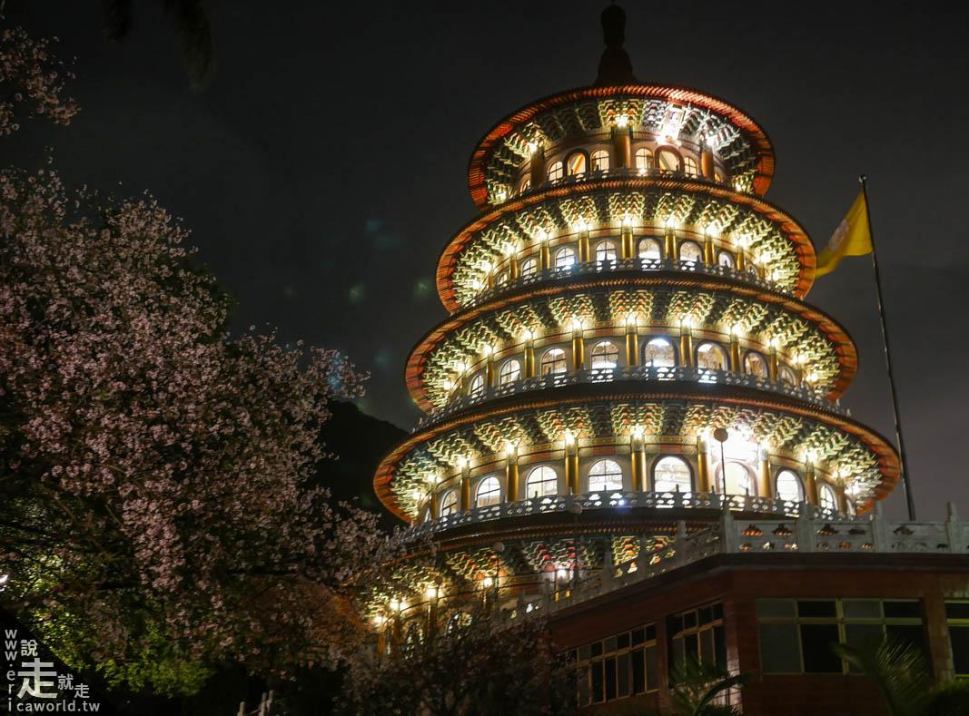 天元宮天壇附近 夜櫻