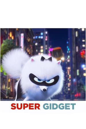 Super Gidget 2019 1080p BluRay x264-FLAME