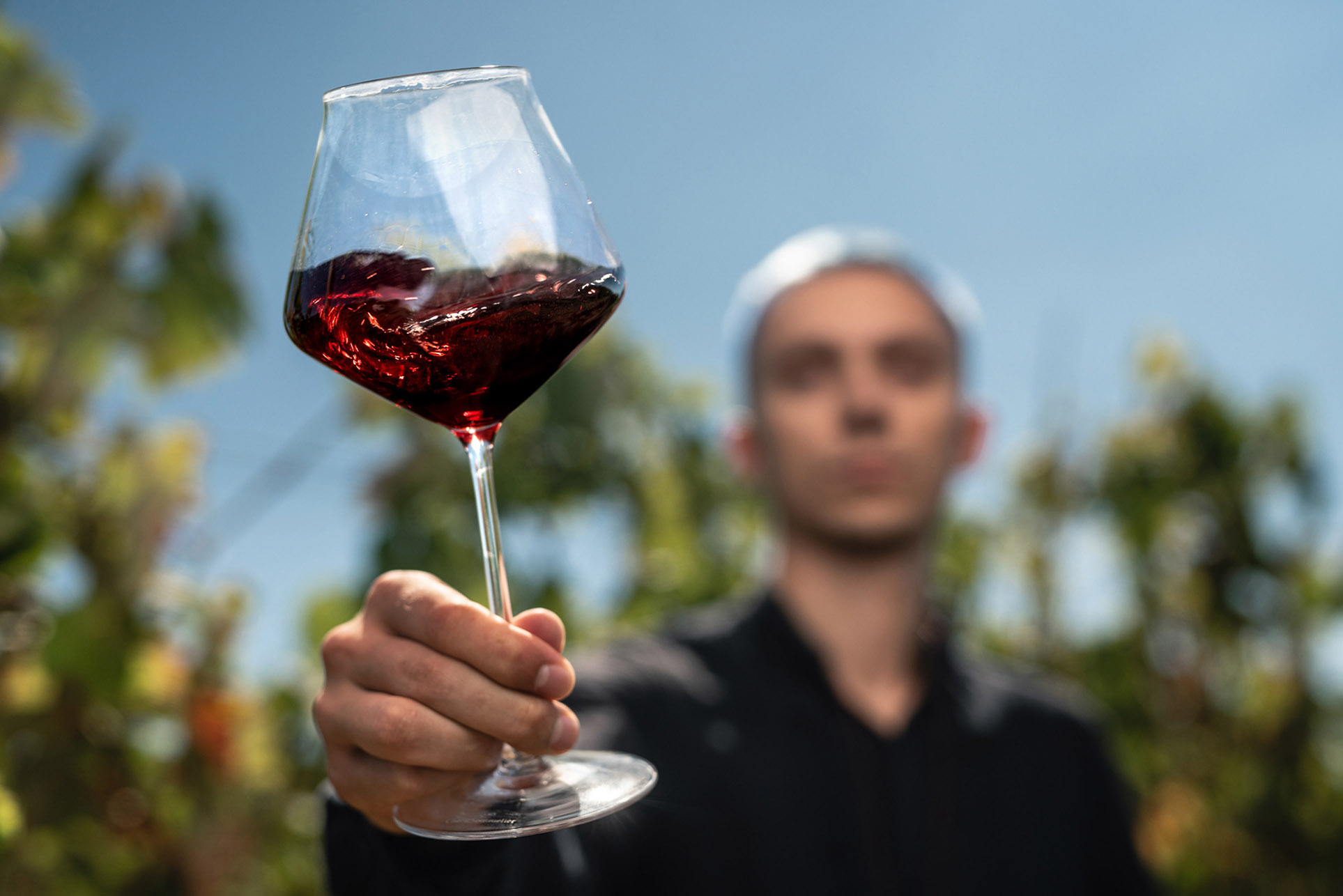 виноделы - сбор урожая и изготовление вина / фото 17