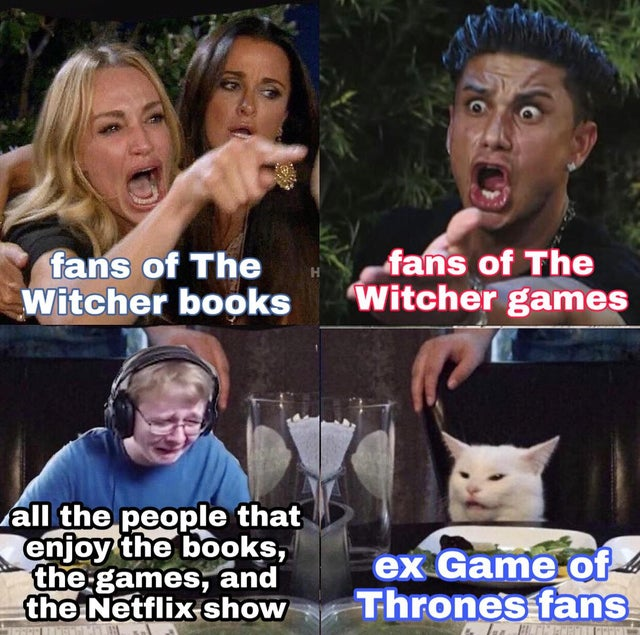 21 Witcher Memes Netflix for True Fans, Memes You can Toss a Coin to Vol 03 11