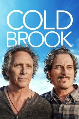 Cold Brook 2019 720p WEBRip 800MB x264-GalaxyRG