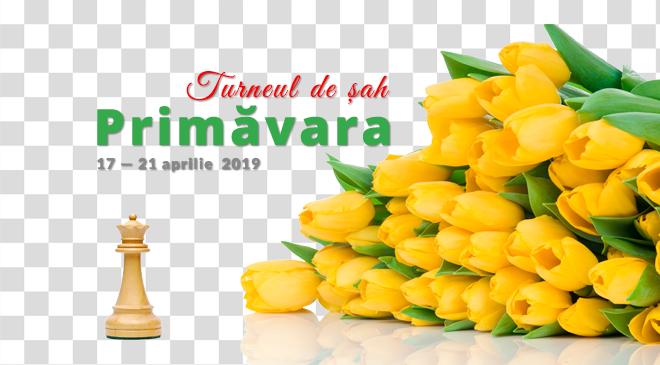 """Turneul de Șah """"PRIMĂVARA"""" 2019"""
