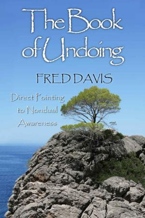 The Book of Undoing  Direct Pointing to Nondual Awareness