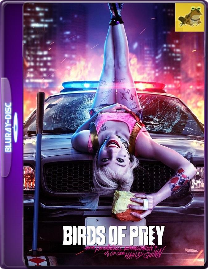Aves De Presa (2020) Brrip 1080p (60 FPS) Latino / Inglés