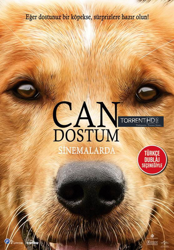 Can Dostum - A Dogs Purpose (2017) TR BRRip XviD Torrent indir