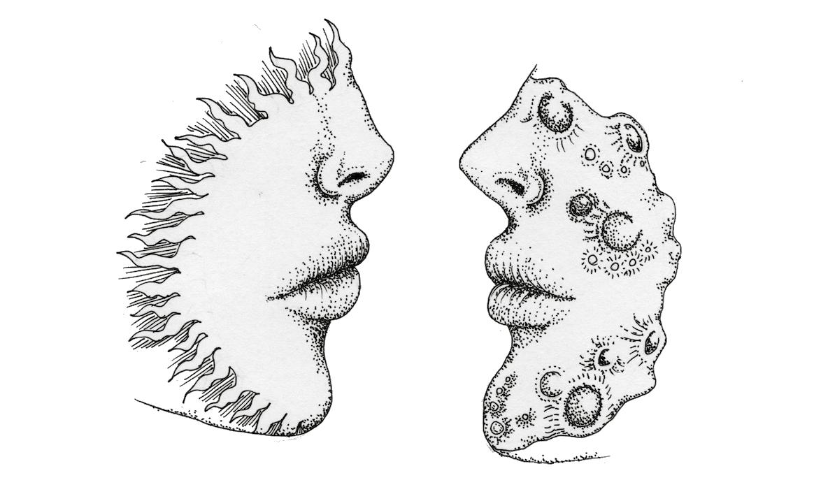 Corey & Ethanaël - Page 5 E74CMf41_o