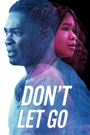 Dont Let Go 2019 WEB-DL XviD AC3-FGT