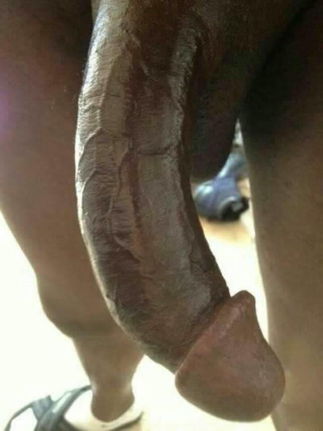 Bengali group sex story-7251