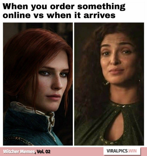 30+ The Witcher Netflix Funny Memes for True Fan of the Game & Show 3