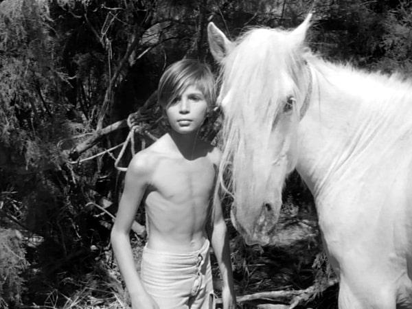White Mane 1953