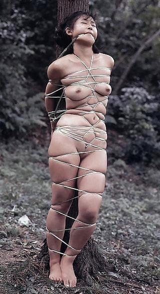 Japanese bondage rope-2804