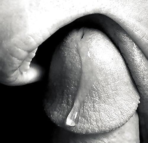 Sensual blowjob photos-8690