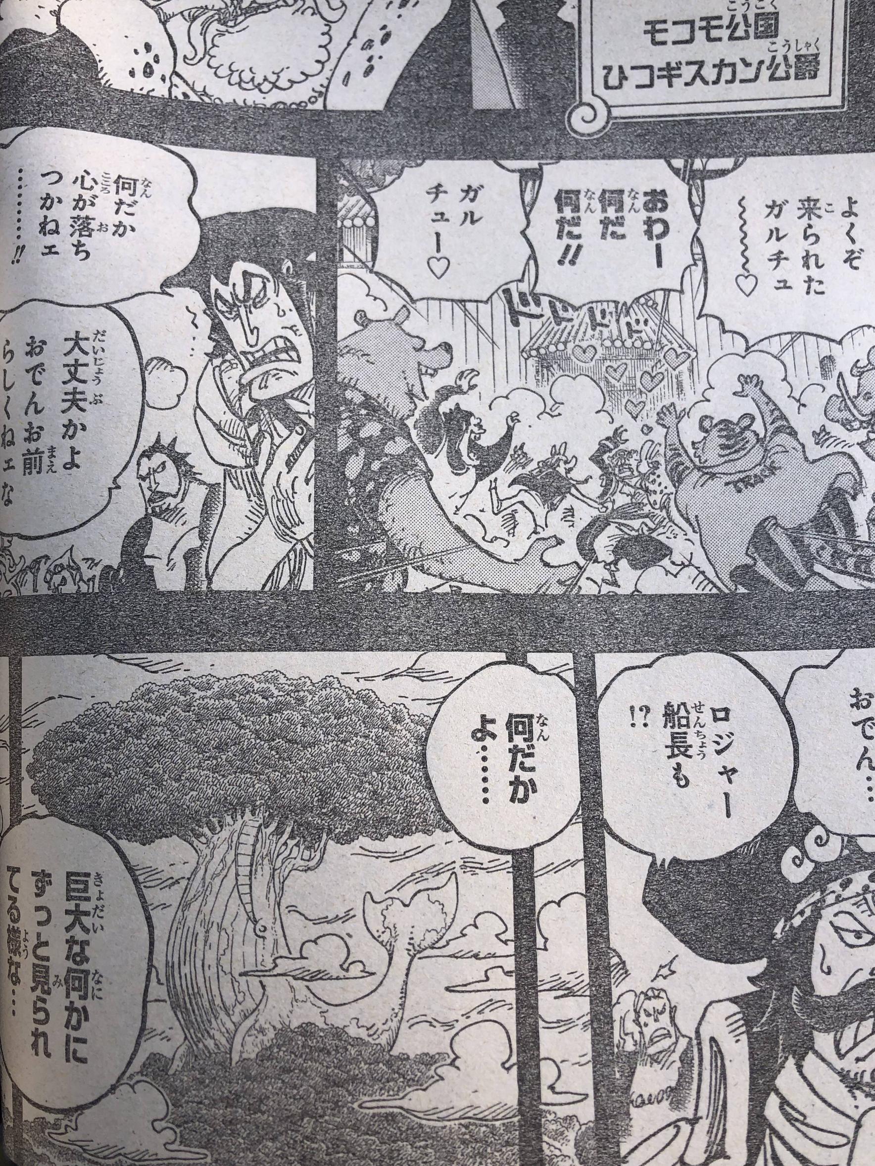 One Piece Spoilers 967 Z9F0vUFa_o