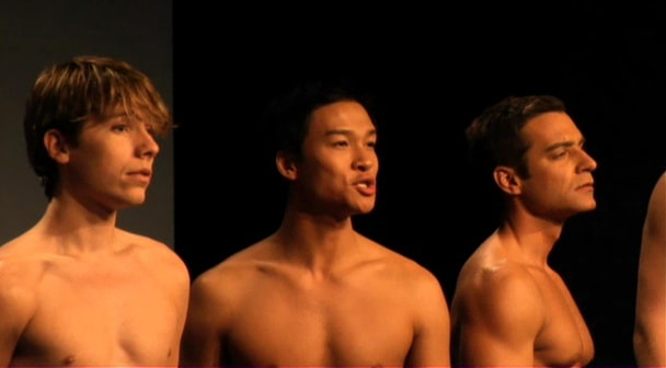 Naked Boys Singing! 2007